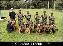 Vom PC aus für die Schweizer Congohounds im Kongo voten!-img_7263.jpg