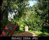 Einsteiger DSLR?-uploadfromtaptalk1344628335136.jpg