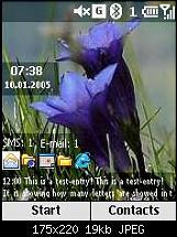 HS: Enzian-1861_1105339361.jpg
