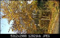 Fotoqualität des Samsung Galaxy Note 4-2014-11-23-14.25.52.jpg