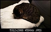 Fotoqualität des Samsung Galaxy Note 4-20141221_144317.jpg