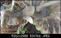 Fotoqualität des Samsung Galaxy Note 4-20141221_140236.jpg