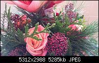 Fotoqualität des Samsung Galaxy Note 4-20141227_100413.jpg