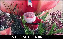 Fotoqualität des Samsung Galaxy Note 4-20141227_100439.jpg
