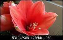 Fotoqualität des Samsung Galaxy Note 4-20141227_100515.jpg