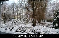 Fotoqualität des Samsung Galaxy Note 4-uploadfromtaptalk1422817282558.jpg