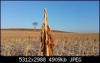 Fotoqualität des Samsung Galaxy Note 4-20150227_080455-1.jpg