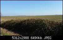 Fotoqualität des Samsung Galaxy Note 4-20150312_144837.jpg