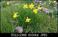Fotoqualität des Samsung Galaxy Note 4-uploadfromtaptalk1427270934723.jpg