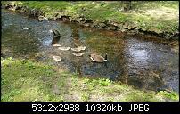 Fotoqualität des Samsung Galaxy Note 4-20150524_145952.jpg