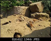 Kamera BQ verbessern-uploadfromtaptalk1338235686539.jpg