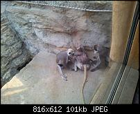 Kamera BQ verbessern-uploadfromtaptalk1338235719957.jpg