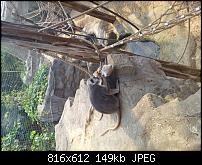 Kamera BQ verbessern-uploadfromtaptalk1338235730182.jpg