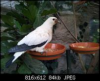 Kamera BQ verbessern-uploadfromtaptalk1338235758221.jpg