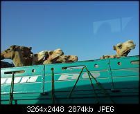 Kamera BQ verbessern-20120506_164915.jpg
