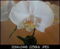Kamera Probleme-2011-05-26-20.22.00.jpg