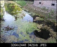 Kamera (Video- und Fotoqualität) vom Galaxy S III-20120610_195432-1-.jpg