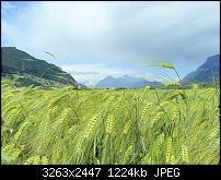 Kamera (Video- und Fotoqualität) vom Galaxy S III-20120611_120836.jpg