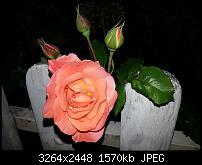 Kamera (Video- und Fotoqualität) vom Galaxy S III-20120606_213112.jpg