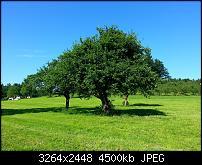 Kamera (Video- und Fotoqualität) vom Galaxy S III-2012-06-05-16.58.22.jpg