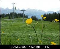 Kamera (Video- und Fotoqualität) vom Galaxy S III-dsc_0017.jpg