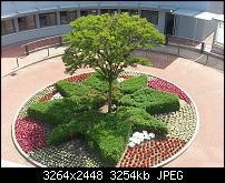 Kamera (Video- und Fotoqualität) vom Galaxy S III-20120622_145923.jpg