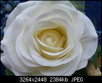 Kamera (Video- und Fotoqualität) vom Galaxy S III-20120622_150223.jpg