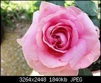 Kamera (Video- und Fotoqualität) vom Galaxy S III-20120630_141733.jpg