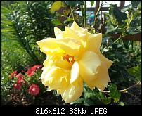 Kamera (Video- und Fotoqualität) vom Galaxy S III-uploadfromtaptalk1341417757122.jpg