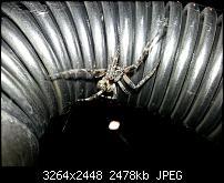 Kamera (Video- und Fotoqualität) vom Galaxy S III-20120724_222842.jpg