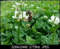 Kamera (Video- und Fotoqualität) vom Galaxy S III-20120729_143816.jpg