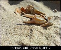 Kamera (Video- und Fotoqualität) vom Galaxy S III-20120810_175238.jpg