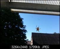 Kamera (Video- und Fotoqualität) vom Galaxy S III-2012-08-12-09.54.36.jpg