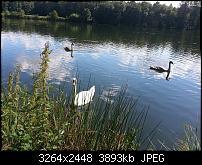 Kamera (Video- und Fotoqualität) vom Galaxy S III-2012-08-11-15.22.46.jpg