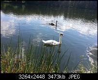 Kamera (Video- und Fotoqualität) vom Galaxy S III-2012-08-11-15.22.55.jpg