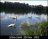 Kamera (Video- und Fotoqualität) vom Galaxy S III-2012-08-11-15.23.00.jpg