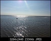 Kamera (Video- und Fotoqualität) vom Galaxy S III-20120810_173830.jpg