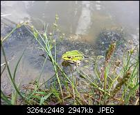 Kamera (Video- und Fotoqualität) vom Galaxy S III-2012-08-19-13.01.55.jpg