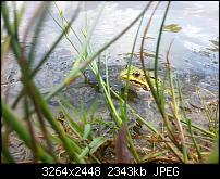 Kamera (Video- und Fotoqualität) vom Galaxy S III-2012-08-19-13.02.18.jpg