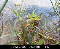 Kamera (Video- und Fotoqualität) vom Galaxy S III-2012-08-19-13.03.11.jpg