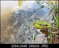 Kamera (Video- und Fotoqualität) vom Galaxy S III-2012-08-19-13.03.20.jpg