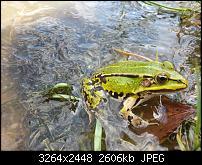 Kamera (Video- und Fotoqualität) vom Galaxy S III-2012-08-19-13.03.24.jpg