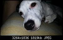 Kamera (Video- und Fotoqualität) vom Galaxy S III-20120820_082152.jpg