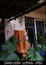 Kamera (Video- und Fotoqualität) vom Galaxy S III-20120820_190243.jpg