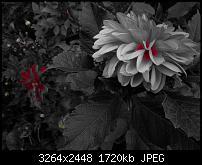 Kamera (Video- und Fotoqualität) vom Galaxy S III-20120901_201749.jpg