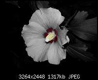 Kamera (Video- und Fotoqualität) vom Galaxy S III-20120901_201844.jpg