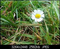 Kamera (Video- und Fotoqualität) vom Galaxy S III-2012-08-29-15.30.48.jpg