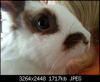 Kamera (Video- und Fotoqualität) vom Galaxy S III-2012-09-04-17.55.18.jpg