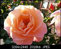 Kamera (Video- und Fotoqualität) vom Galaxy S III-2012-09-04-18.00.08.jpg