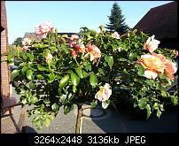 Kamera (Video- und Fotoqualität) vom Galaxy S III-2012-09-04-17.57.41.jpg